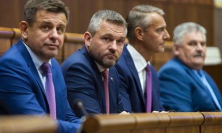 Michalovce dostanú od vlády milióny eur na modernizáciu športovísk