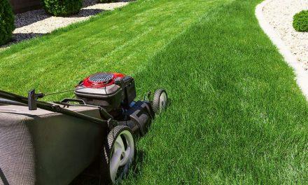 Ako si vybrať záhradnú kosačku