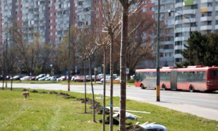 Do obnovy verejného priestoru v Petržalke budú môcť zasiahnuť aj samotní obyvatelia mestskej časti