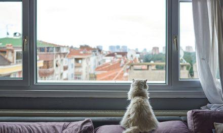 Aj sklo môže pomôcť ochrániť pred hlukom