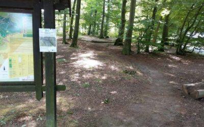 Povrch cyklotrasy v lesoparku medzi Železnou studničkou a Bielym krížom je opravená