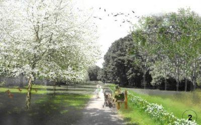 V Brezovom háji okrem bytov vyrastie aj nový upravený park, vysadia 400 stromov a tisícky kvetov