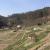 Pod Pernštejn se vrací hrušně i vodopád, vrcholí tříletá obnova zahrad